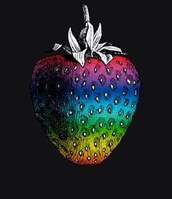 03-erdbeerfeld