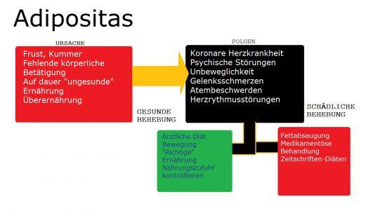 Ursache und Gründe von Adipositas